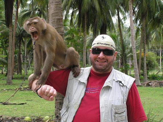А.П. Иванив с обезьяной на кокосовой плантации (о-в Самуи, Таиланд). Январь 2006